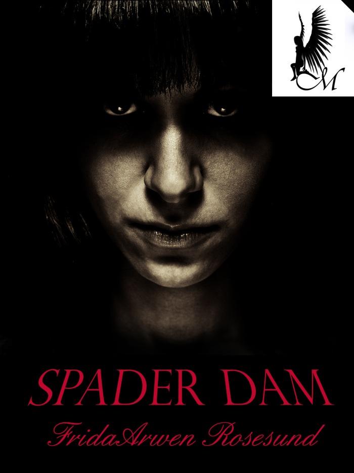 Spader dam2
